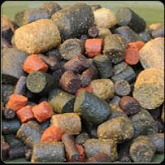 Carpio MIX pellets